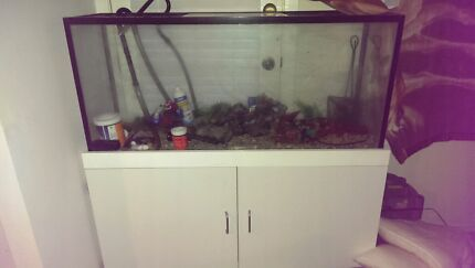 Fish tank with pump an all goods to get up an running  Windsor Hawkesbury Area Preview