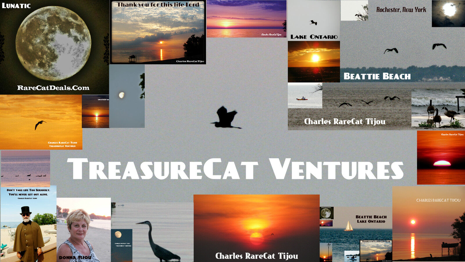 RareCatDeals.com  Treasure Hunters