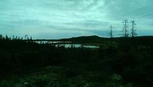 Cabin Lot - Carbonear, Line Rd.