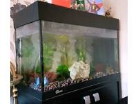 125 Litre Fish Tank With Stand