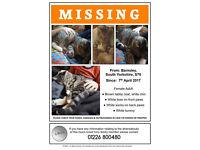 Missing in Barnsley