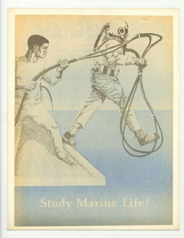 Black Civil Rights Poster 1970 African American Empowerment Through Education
