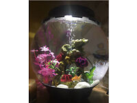 Biorb Halo 30 All in one Fish Tank with Extras