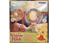 Tony Disney Winnie the Pooh light show