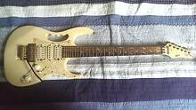 Ibanez Jem replica Girards Hill Lismore Area Preview