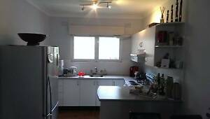 Flatmate wanted for sunny apartment in Dee Why Dee Why Manly Area Preview