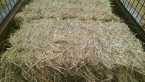 Grass Hay for sale Koo Wee Rup Cardinia Area Preview