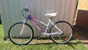Womens bike *Brand New* 66cm Devonport Devonport Area Preview