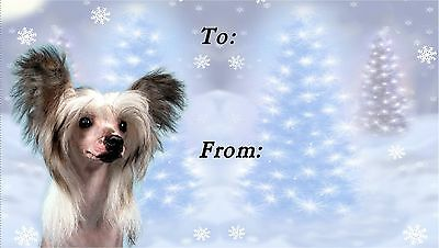 Chinese Crested Christmas Labels by Starprint - No 1
