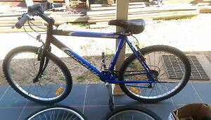 21 speed shogun men mountain bike bicycle push pedal Kellyville The Hills District Preview