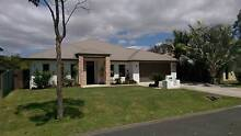 Executive Residence - Massive Rooms 24hr security Coomera Waters Coomera Gold Coast North Preview