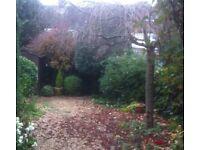 Garden Services, Gardener, Landscaping, Garden Tidy, Paving, Driveways
