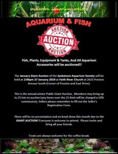 Saskatoon Aquarium Society Giant Auction
