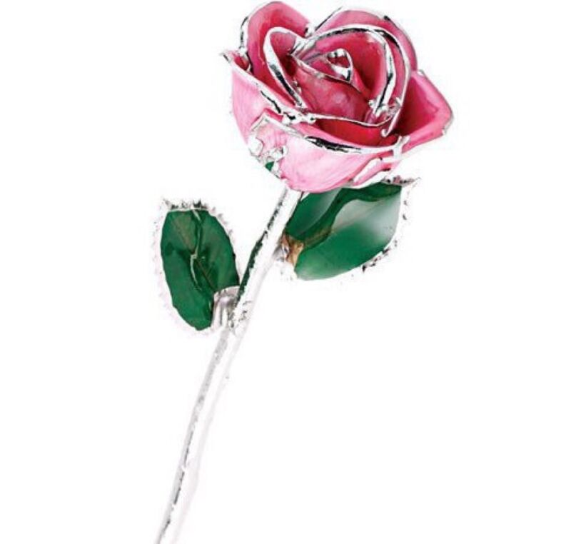"""Pink Passion Rose Trimmed in Silver Lacquered Long Stemmed Forever Rose 11.5"""""""