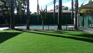 Natural Look Artificial/Synthetic/Fake Grass/Lawn/Turf Magill Campbelltown Area Preview