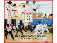 Are you looking for Karate class in North London? A free beginners course starting on 8th November.