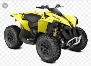 Looking for a can am Renegade