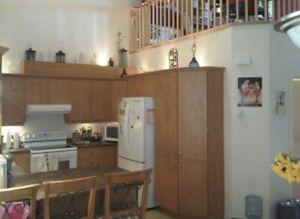 5 1/2 Triplex jumelé, deux étages, avec mezzanine, tranquille