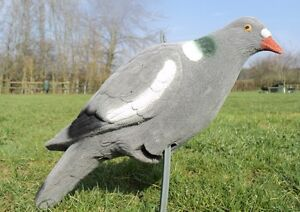 6-FULL-BODIED-FLOCKED-PIGEON-DECOY-SHOOTING-PEG-FEET
