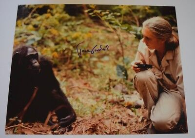 Jane Goodall Signed Autographed 11X14 Photo Primatologist Coa Vd