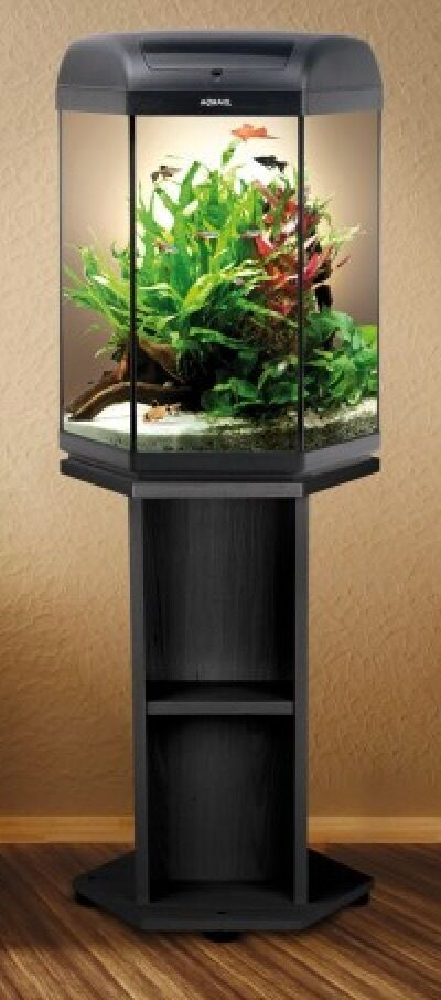 hexagon 60 litre tropical aquarium with hexagon stand in black in salford manchester gumtree