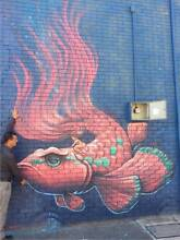 FREE MURAL FOR SELECTED BUSINESS! Brisbane City Brisbane North West Preview