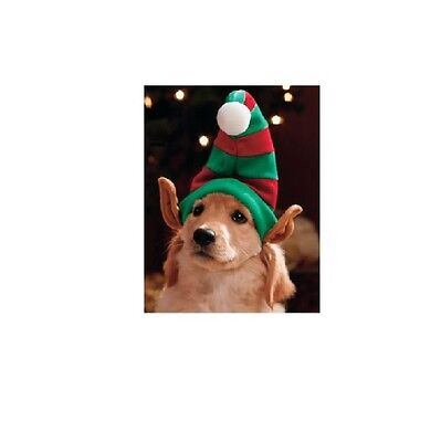 Elfen Hut für Hunde & Katze - Urlaub Headpieces - Foto - Op für Ihr Haustier - Urlaub Kostüm Für Hunde