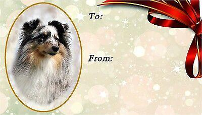 Shetland Sheepdog/Sheltie Self Adhesive Gift Labels design No. 3. by Starprint