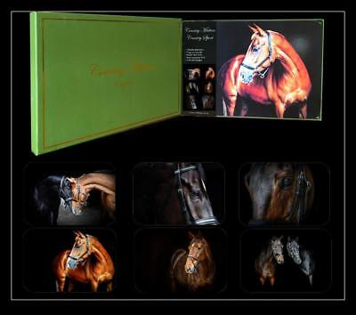 Country Matters Set of 6 Horse Equine Photographic Place mats Placemats