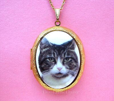 Porcelain GRAY & WHITE TABBY CAT CAMEO Costume Jewelry Locket Pendant - Tabby Cat Costume
