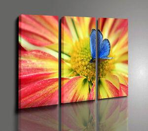Quadri moderni fiori farfalla quadri moderno natura piante Quadri moderni arredamento prezzi