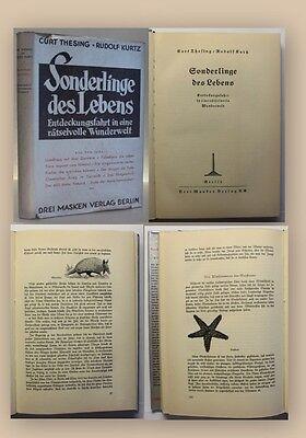 Thesing Sonderlinge des Lebens 1936 Entdeckungsfahrt Reisen Geografie Ortskunde