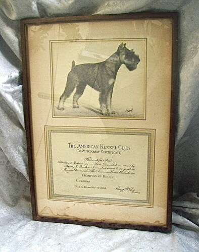 "ORIG 1942 AKC CHAMPIONSHIP CERTIFICATE for SCHNAUZER DOG ""SIR LANCELOT"" &  PHOTO"
