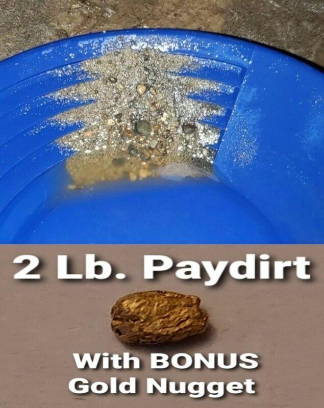 2 Lbs. + BONUS NUGGET Guaranteed Unsearched Gold Panning Paydirt Black River WA