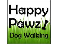 Happy Pawz Dog Walking: Daycare, Group Walks, Solo Walks & Home Visits for Dogs in Renfrewshire