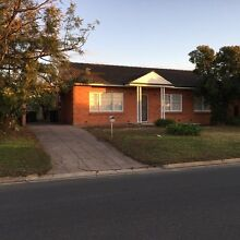 Renovated 3 bedroom house in newton Newton Campbelltown Area Preview