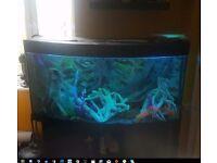 Fish Tank . 300 liters Aquarium