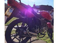 Lexmoto street 125cc learner legal