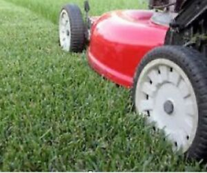 Grass cutting, maintenance and more !