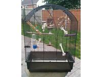 Cocktail / parakeet cage