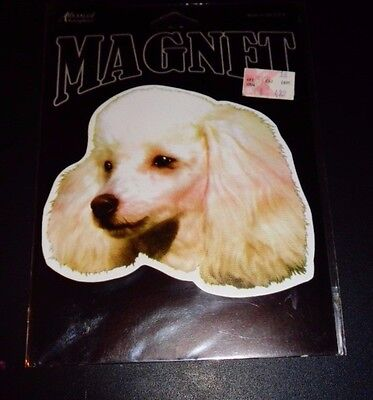 Advanced Graphic Poodle Magnet 724416103352 Made in USA