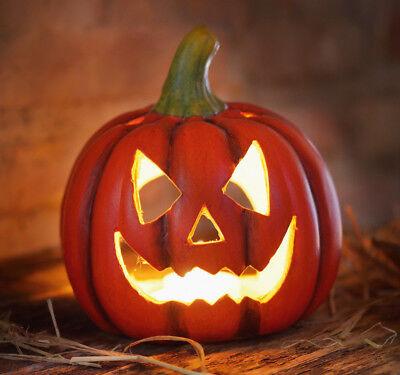 Kürbiswindlicht Halloween, Herbstdekoration, Kürbis, Windlicht, Pumpkin