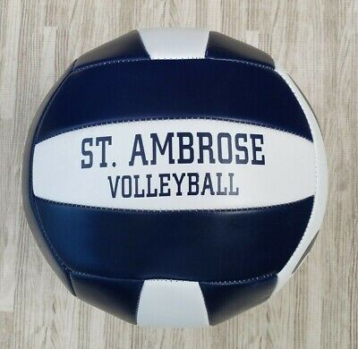 St. Ambrose University Fighting Bees Volleyball Ball ~ White Blue Sterling 5-7 for sale  USA