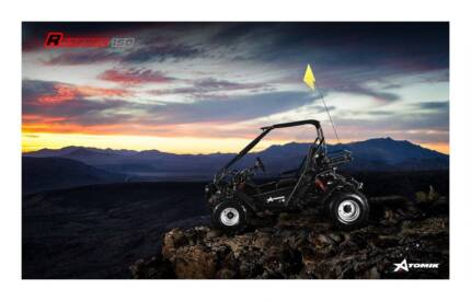 2017 ATOMIK RAMPAGE 150CC GO KART DUNE BUGGY OFF ROAD ADULT SIZE