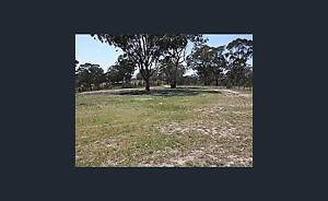 Urgent: Country investment for sale with sitting tenant Sydney City Inner Sydney Preview