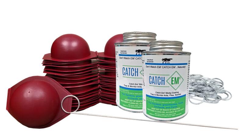 llBug Ball (25 Pack) Apple Maggot Trap Starter Kit - with NO Pesticides