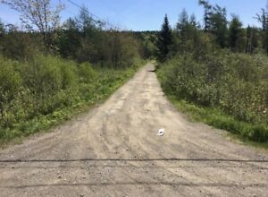 Land for sale 35 acres Kingston NB