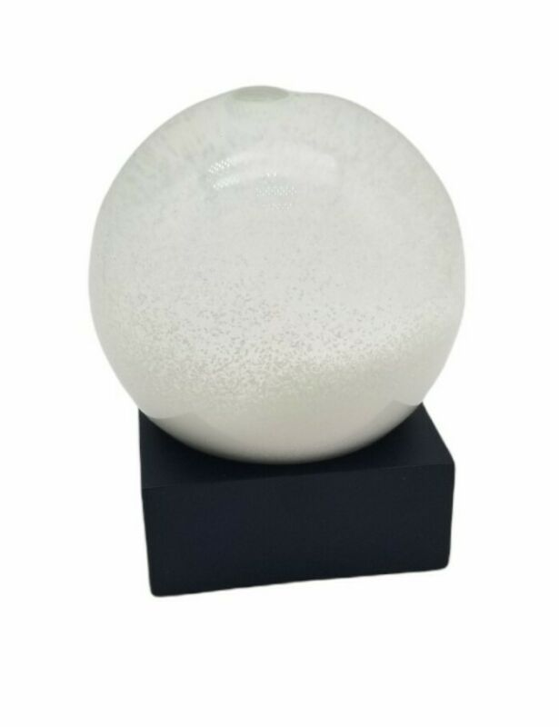 CoolSnowGlobes Snowball All Snow Cool Snow Globe Fluid and Solid