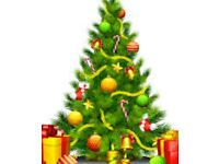 Christmas tree collection service