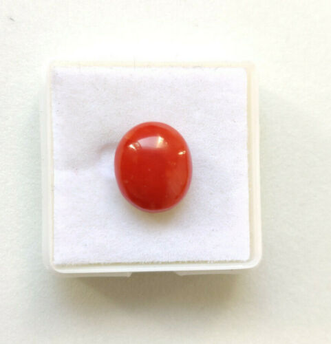 Oval Shape Natural Italian Red Coral Loose Cabochon, Italian Coral For Jewelry